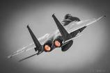 F15 モノトーン+