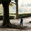 少年よ 大樹に育て