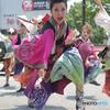 紀州よさこい祭り⑭浪花乱風さん