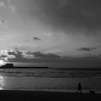 CANON Canon EOS-1Ds Mark IIIで撮影した(Monochrome sunset #1)の写真(画像)