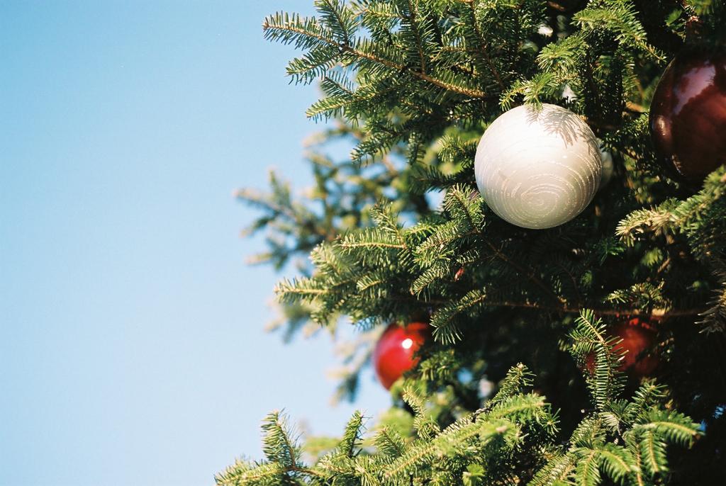 クリスマスの恵比寿
