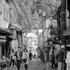 奈良の長谷寺参道