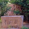 妻木天神社跡 #1