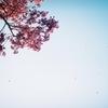 春ノ記憶 #6