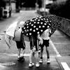 雨の日のおしゃべり