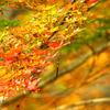 三郎の滝、紅葉にはまだ遠い?3