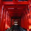 深紅の入口