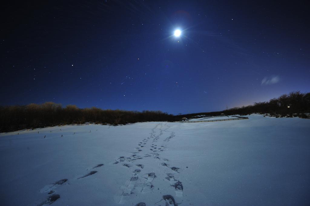 moonnight walk