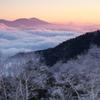 霧氷の夜明け