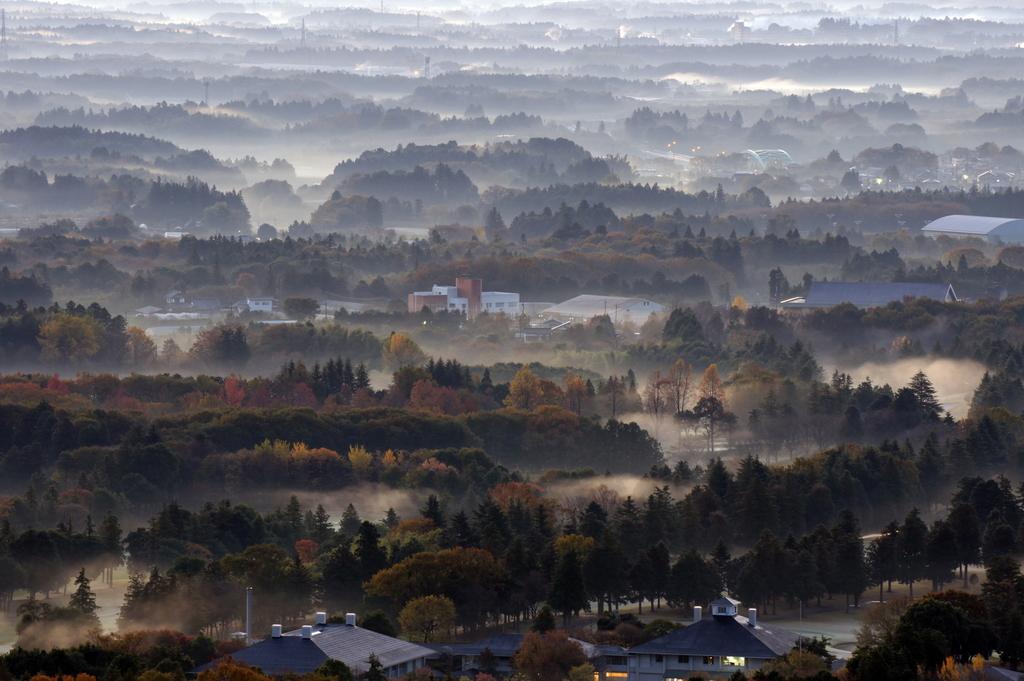 朝靄の街・紅葉
