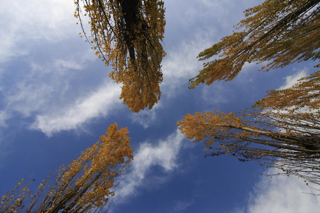 深まり行く秋