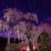 降る星に 打たれて枝垂れる 桜かな