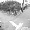 自転車と道