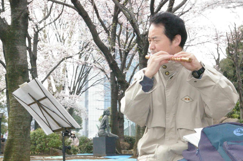 桜の木の下で・・・中国笛編