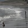 海開きはまだずっと先
