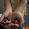 小さな宝物