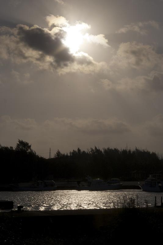 漁港の朝。