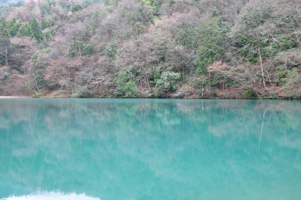 丹波篠山(!)の「青い池」