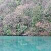 丹波篠山(!)の青い池3