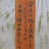 本埜村の白鳥