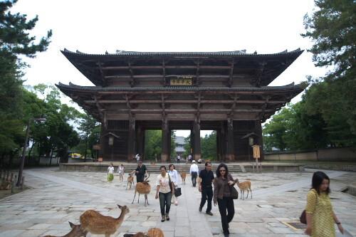 奈良 大仏殿