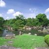 二条城の庭