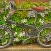 つつじ自転車