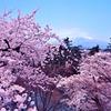 弘前公園と岩木山