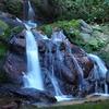 ジャングルの中の滝