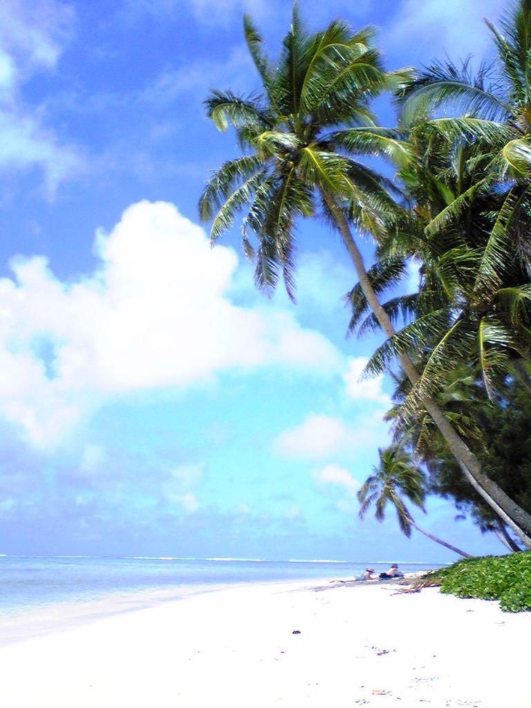 ラロトンガ島の風景