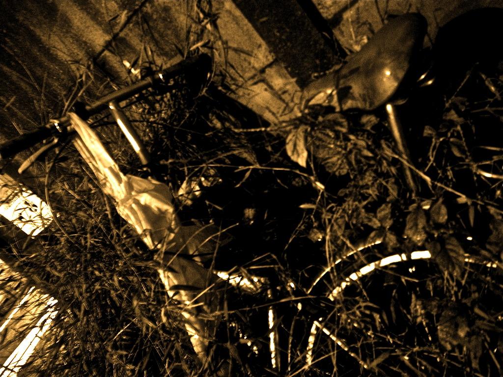 草に溶けゆく自転車