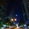 Shinjyuku Moon Light