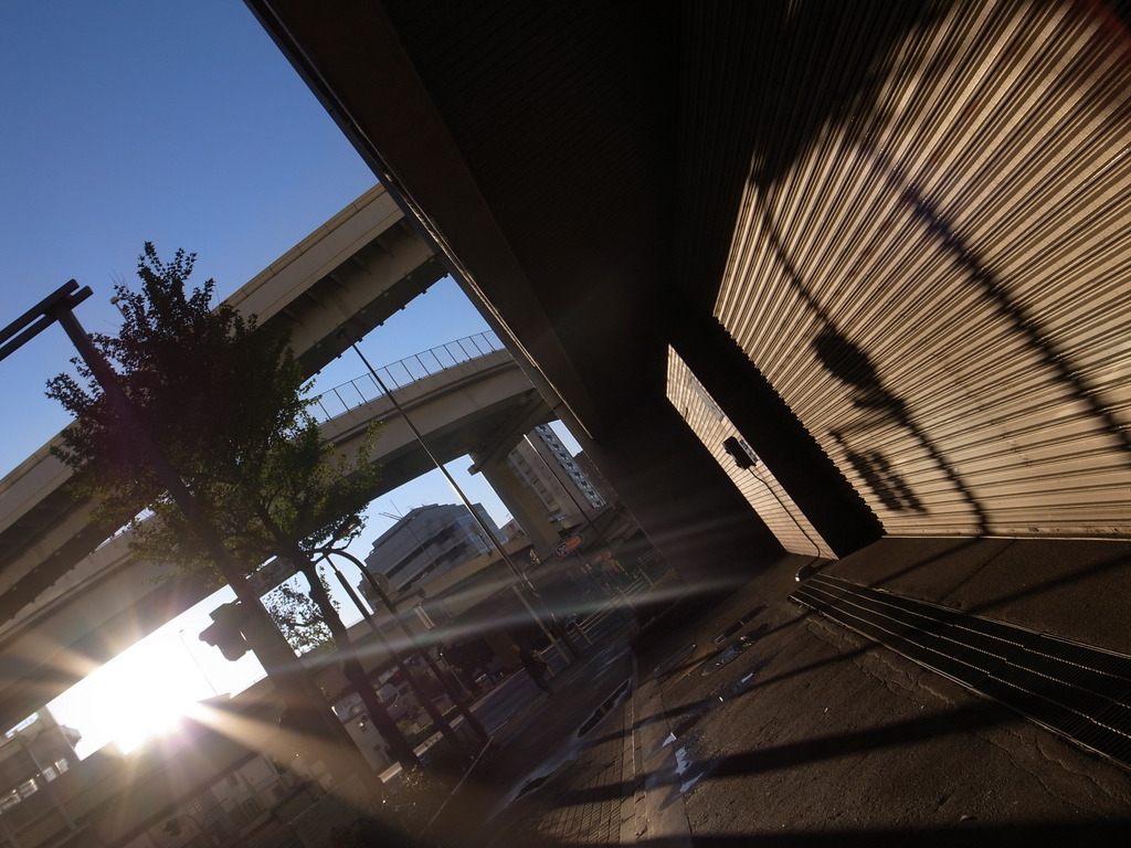 Sun Rise 光と影