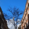 Sunny day in London