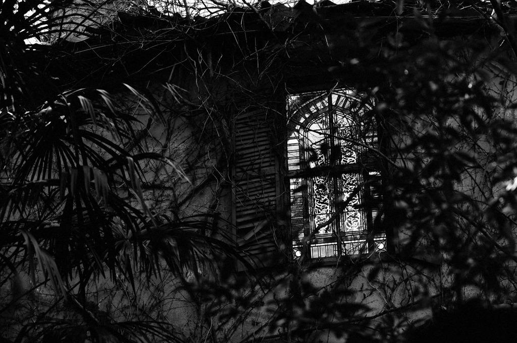 廃墟のステンドグラス
