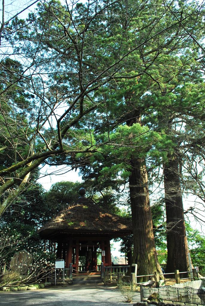 幡かけ杉と鐘堂