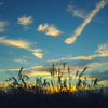晩秋流れ雲