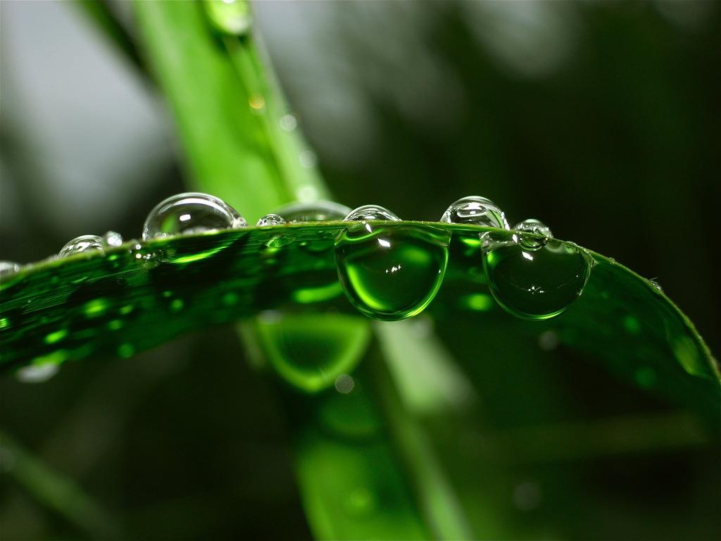 DEEP CRYSTAL GREEN