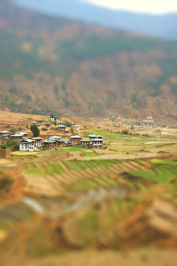 谷に広がる農村