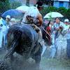 御田祭2009