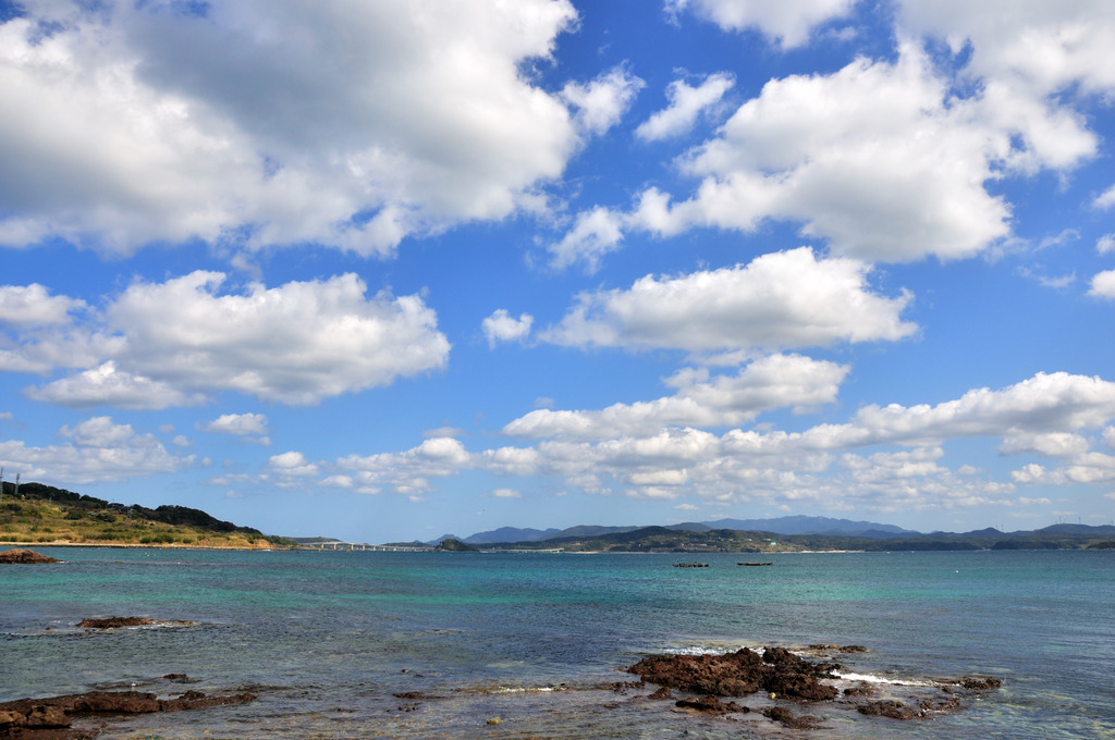 春雲も集まるほどの青さかな