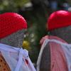 真っ赤な帽子が良く似合う