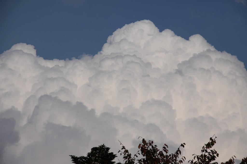 秋なのに入道雲?