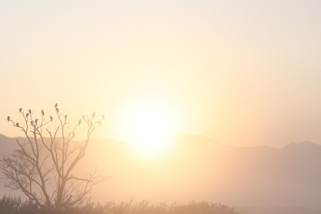 牙城に射す陽