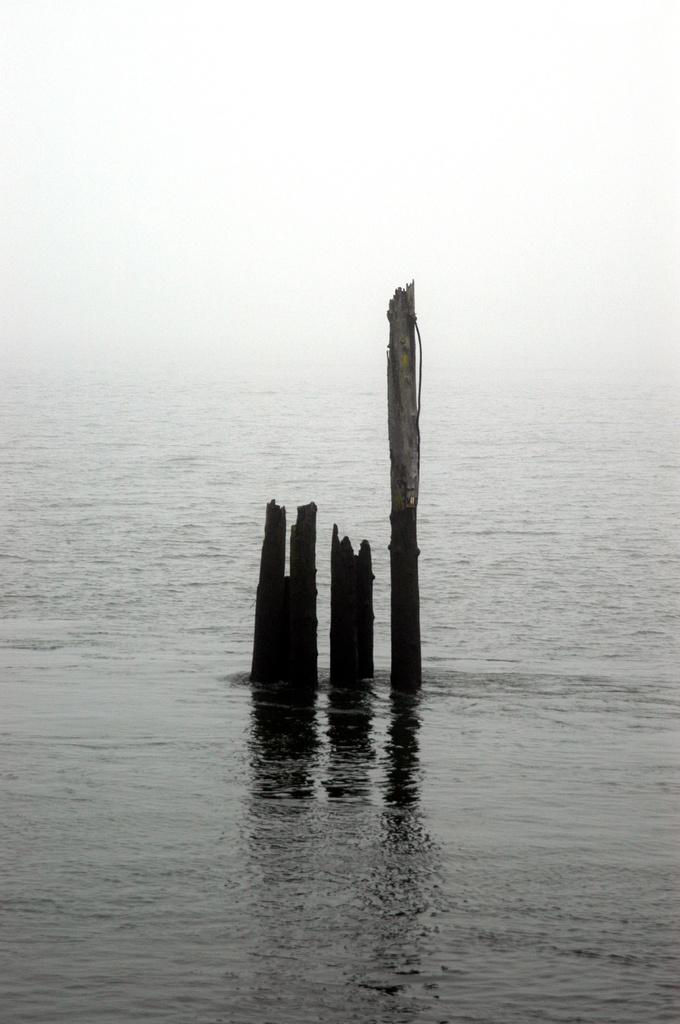 Ground Fog Day