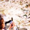 桜を携帯しよう