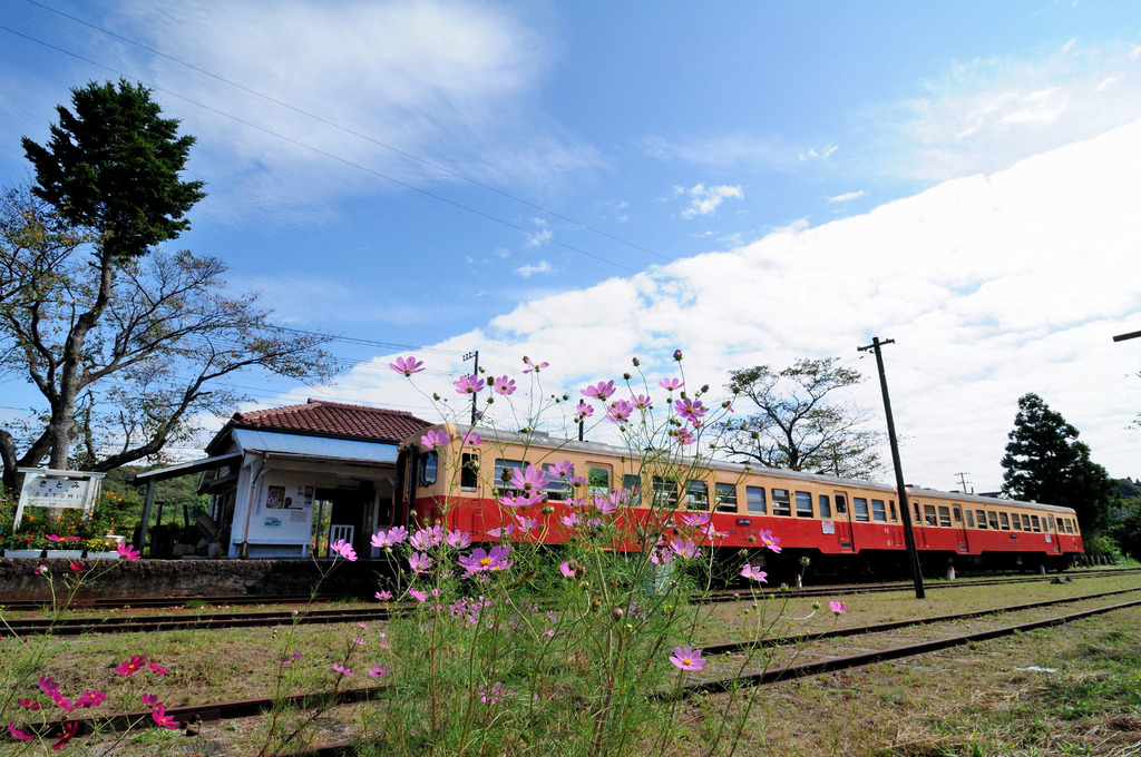 ローカル駅秋景