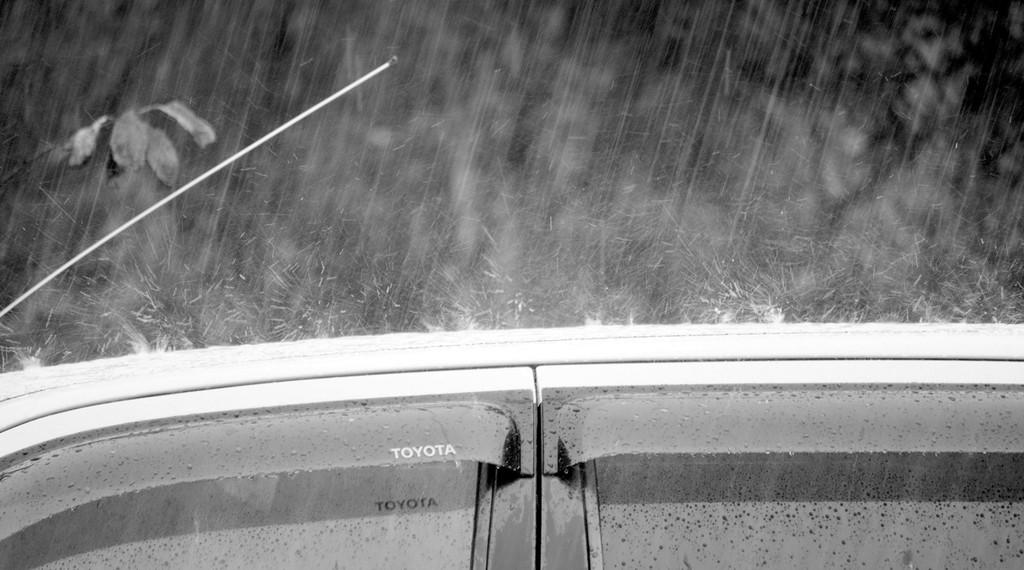 雨 弾ける