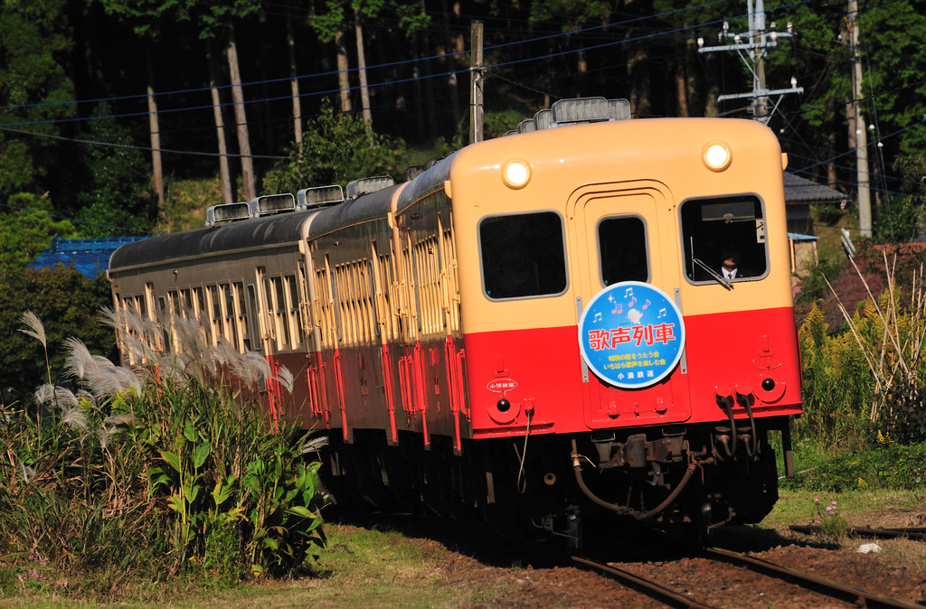 歌声列車(秋の歌声を乗せて)♪