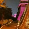 坂の上の松山城